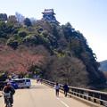 写真: 木曽川沿いから見上げた犬山城 - 1