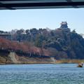 風流お花見船 2015 No - 35:桜並木と犬山城