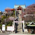 写真: 犬山成田山(2015年3月)No - 05:本堂まで続く急な階段