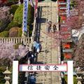 写真: 犬山成田山(2015年3月)No - 07:本堂まで続く急な階段