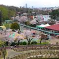 写真: 春の東山動植物園 No - 074:バラ園の展望台から見た景色(2015/4/4)