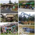 写真: 東山動植物園:施設のリニューアル、他 - 2