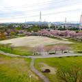 Photos: 桜の時期、水の塔から見下ろした落合公園(2015/4/7)No - 17
