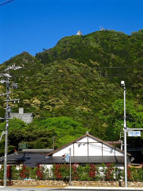 金華山の麓から見上げた岐阜城 - 1