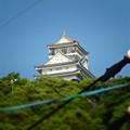 写真: 金華山の麓から見上げた岐阜城 - 7(チルトシフト。フィルター有り)