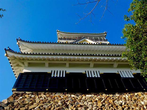 岐阜城 No - 10:真下から見上げた岐阜城