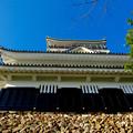 写真: 岐阜城 No - 10:真下から見上げた岐阜城