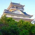 写真: 岐阜城 No - 11:夕暮れ時の岐阜城
