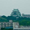 写真: 名古屋高速から見た名古屋城 - 2