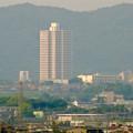 写真: エアポートウォーク名古屋:展望デッキから見た、夕暮れ時の桃花台ニュータウン - 3