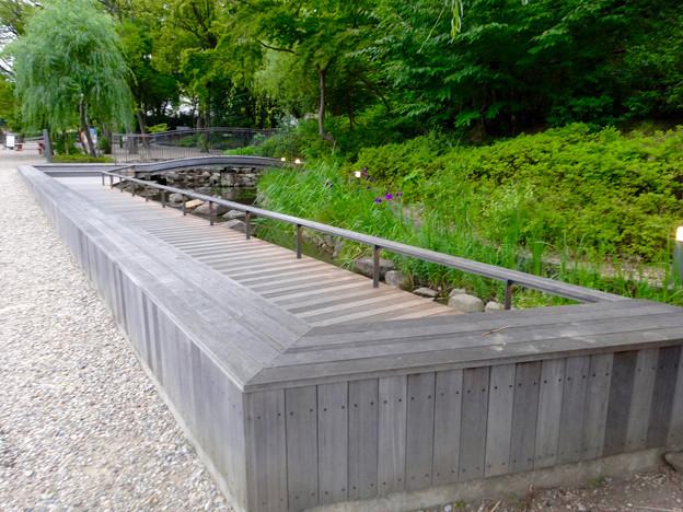 興正寺(興正寺公園) - 30:参道横のビオトープ
