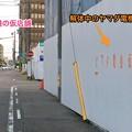 写真: ヤマダ電機テックランド春日井店の仮店舗(2016年6月) - 9