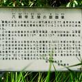 ポートメッセなごや:施設の端に設置されてる「六朝帝王陵の麒麟像」 - 3