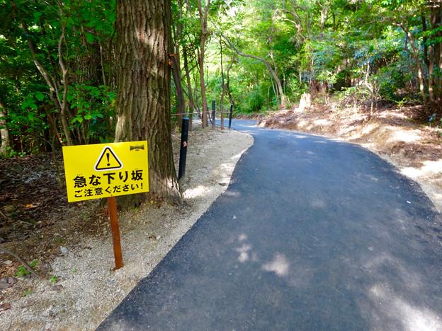 写真: 大高緑地に「ディノアドベンチャー名古屋」がプレオープン! - 83:コース内の下り坂の注意書き