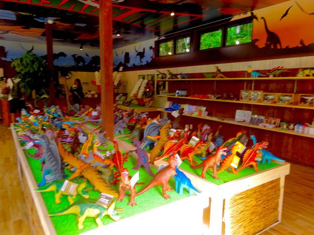 写真: 大高緑地に「ディノアドベンチャー名古屋」がプレオープン! - 91:コース入口にある施設(恐竜グッズを販売してるお店)