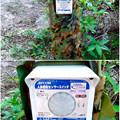 写真: 大高緑地に「ディノアドベンチャー名古屋」がプレオープン! - 101:人感センサー