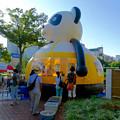 写真: 東北屋台村 2016 No - 4:パンダのふわふわ