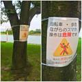写真: 落合公園:ポケモンGoの影響で「歩きスマホ」や「自転車乗りながらのスマホ」の注意書き - 3