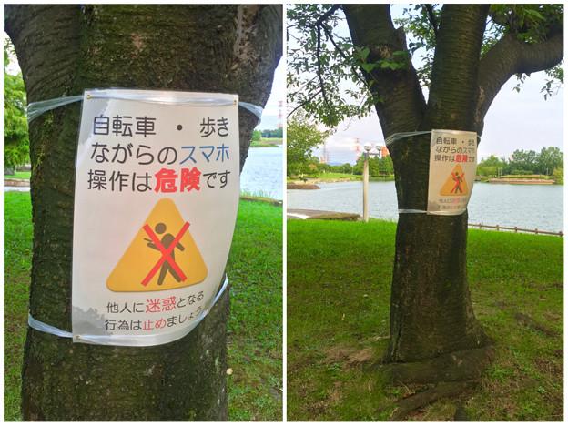 写真: 落合公園:ポケモンGoの影響で「歩きスマホ」や「自転車乗りながらのスマホ」の注意書き - 5