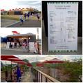 Photos: 犬山城下町に数ヶ月前にオープンした複合施設「森のマルシェ」 - 11
