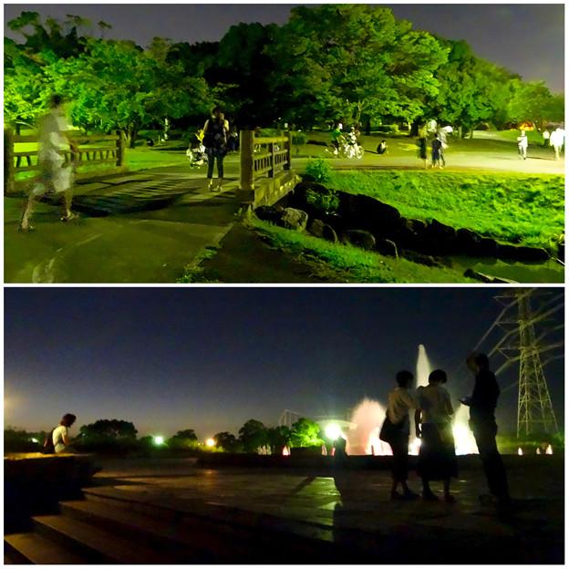 ポケモンGoをやってる人が結構いた、夜の落合公園 - 4