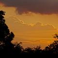 写真: 落合公園:遠くの方に見えた、夏らしい雲 - 1