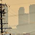 写真: 夕暮れ時の国道19号沿いから見下ろした、名駅ビル群 - 4