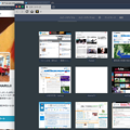 写真: macOS SierraでVivaldi:フルスクリーンモード中、新しいプライベートウィンドウ開いたら…
