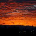 写真: 夕焼けを浴びた鱗(うろこ)雲 - 1