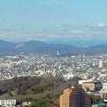 写真: 東山スカイタワーから見た「スカイワードあさひ」(2012年撮影)- 1