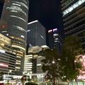 写真: JPタワー名古屋のイルミネーション - 1