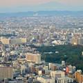 写真: ミッドランドスクエア「スカイプロムナード」から見た景色(夕方) - 72:名古屋城とザ・シーン城北