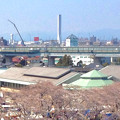 写真: 清洲城から見た三菱電機稲沢製作所のエレベーター試験塔(2012年4月撮影) - 3