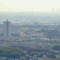 Photos: 白山神社から見たスカイステージ33と名駅ビル群(2009年3月撮影) - 1