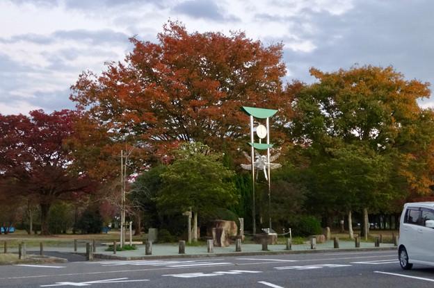 結構紅葉してた小幡緑地 - 2