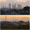 吉根橋から見た、夕暮れ時の名駅ビル群 - 4