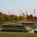 写真: 落合公園の紅葉 - 32
