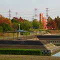 写真: 落合公園の紅葉 - 33
