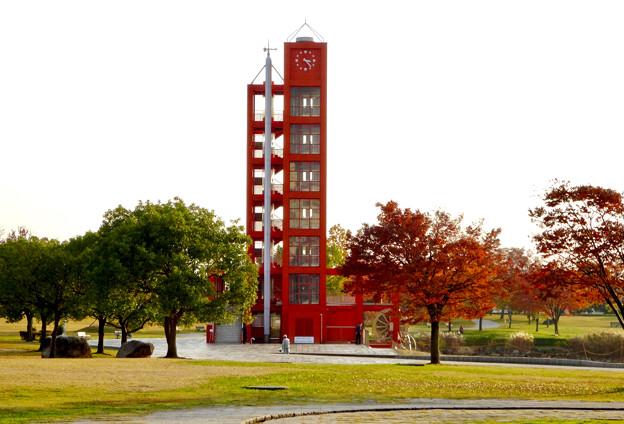 落合公園の紅葉 - 40