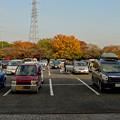 写真: 落合公園の紅葉 - 42