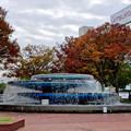 Photos: 久屋大通公園の噴水周りの紅葉 - 1