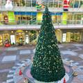 勝川駅前のクリスマスツリー 2016 No - 3
