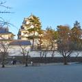 大垣公園 - 29:城西広場から見た大垣城