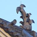 大垣公園 - 35:大垣城の天守鯱瓦