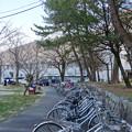 大垣公園 - 38:大垣城ホール