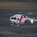 写真: 県営名古屋空港に着陸するヘリコプター - 5