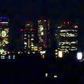 写真: 大池緑地公園から見た、夜の名駅ビル群 - 1
