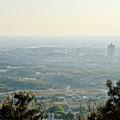 写真: 尾張白山社(白山神社)から見た景色 - 24:桃花台ニュータウン