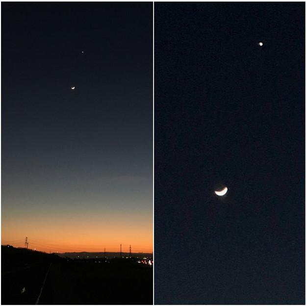 並んで輝く月と金星 - 6
