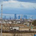 大池緑地公園から見た名駅ビル群 - 1